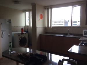 The apartment was a combination Wash & Dry laundry machine.