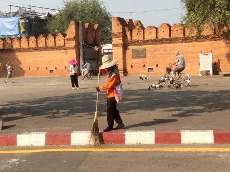 There are lots of street sweepers.